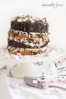 smore-messy-cake-03.jpg